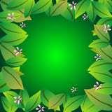 Leaf frame border Royalty Free Stock Image