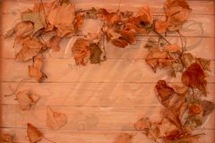 Leaf frame old sign background with space for copy stock images
