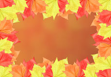 Leaf Frame with Orange Background. Maple leaf frame on white background. It can be used as a Halloween or Thanksgiving image vector illustration