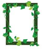 Leaf Frame Royalty Free Stock Photos