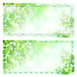 Leaf gift certificate gift card Stock Photography