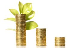 Leaf and gold coins Royalty Free Stock Photos