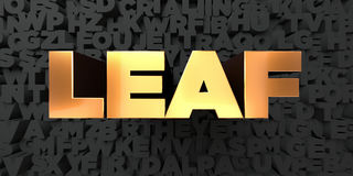 Leaf - Gold text on black background - 3D rendered royalty free stock picture Stock Image