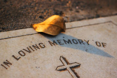 Leaf on a Grave Stock Photography