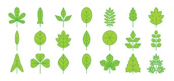 Leaf green icon. Foliage thin simple outline. Flat vector vector illustration
