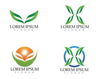 Leaf green nature logo and symbol template Vector Royalty Free Stock Image