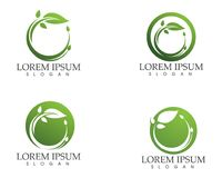 Leaf green nature logo and symbol template Vector Stock Photos