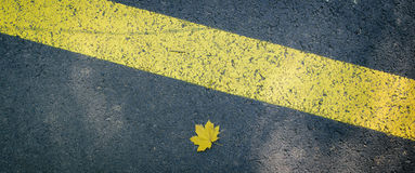 Leaf on the ground. A leaf on the asphalt and a road sign Stock Photos