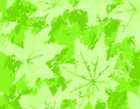 Leaf grunge Royalty Free Stock Images