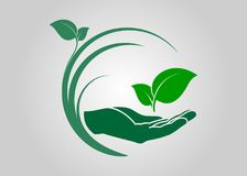 Leaf in hand icon. Ecological symbols and signs green nature concept, humans and plants logo, vector illustration Stock Image