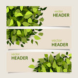 Leaf headers set Royalty Free Stock Photography