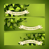 Leaf headers set Royalty Free Stock Photos