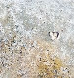 Leaf heart in the Ground royalty free stock images