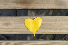 Leaf heart Stock Photography
