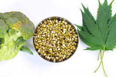 Leaf hemp for salad mung bean sprouts  broccoli Stock Images