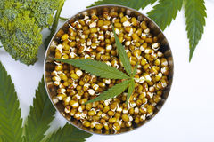Leaf hemp for salad mung bean sprouts  broccoli Stock Photos