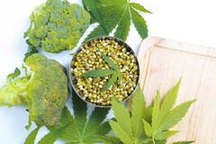 Leaf hemp for salad mung bean sprouts  broccoli Royalty Free Stock Photo
