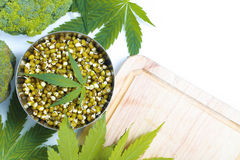 Leaf hemp for salad mung bean sprouts  broccoli Royalty Free Stock Image