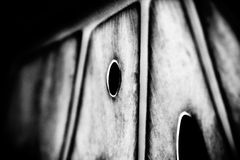Leaf is home. Leaf abstract in black and white Royalty Free Stock Photos