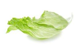 Leaf of Iceberg lettuce. Isolated on white background royalty free stock images