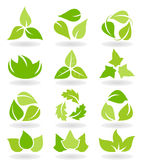Leaf icon Royalty Free Stock Image