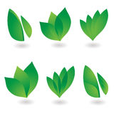 Leaf icon. Collection of six environmental leaf designs with shadow Stock Photography