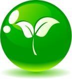 Leaf icon. Royalty Free Stock Photo