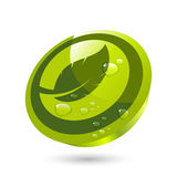 Leaf icon button Royalty Free Stock Images