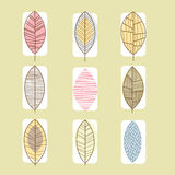Leaf Icon Collection Vector Illustration in Linear. Set of leaf icons vector illustration collection, line design Stock Photography