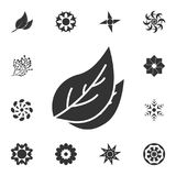 Leaf icon. Detailed set of Flower illustrations. Premium quality graphic design icon. One of the collection icons for websites, we. B design, mobile app on white royalty free illustration