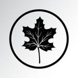 Leaf icon. Maple leaf. Vector illustration royalty free illustration