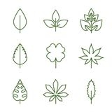 Leaf icon. Modern linear style eps 8 Royalty Free Stock Photography