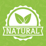 Leaf icon. Natural and organic product. Vector graphic royalty free illustration