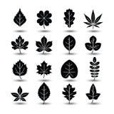 Leaf icon Stock Image