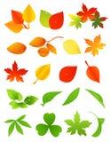 Leaf icon set. Illustration, AI file included Stock Images