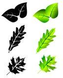 Leaf icon set Stock Photos