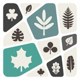 Leaf icon set. Vector illustration Royalty Free Stock Photography