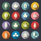 Leaf icon set. Vector Illustration Royalty Free Stock Image