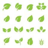 Leaf icon set. Web icon illustration design vector sign symbol Royalty Free Stock Photography