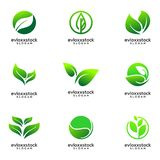 Set Of Leaf Icon Vector Design Template royalty free illustration