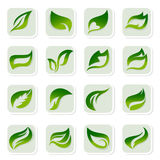 Leaf icons Stock Photos