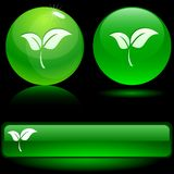 Leaf icons. Beautiful leaf icons. Vector illustration Stock Photography