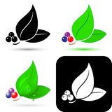 Leaf icons Royalty Free Stock Photography