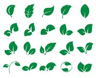 Green leaf iconss isolated on a white background. Leaf icons. Collection of 20 green symbols of leaves isolated on a white background. Vector illustration Stock Image