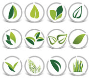 Leaf icons gray. Rounded leaf icons set, illustration isolated on white, collection with shadow Royalty Free Stock Photo