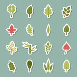 Leaf icons Royalty Free Stock Images