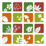 Leaf icons set Stock Photo