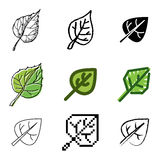 Leaf icons set. Green leaf icons vector set vector illustration