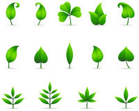Leaf Icons. Set of fresh green leaf icons with shadows.  File is layered, and each leaf is grouped separately for easy editing.  Colors are just a few global Stock Image