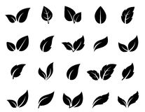 Leaf icons set Royalty Free Stock Photos